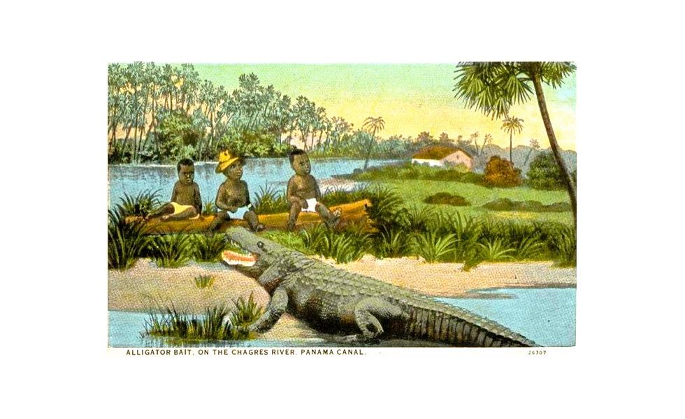 Cebo de aligátor