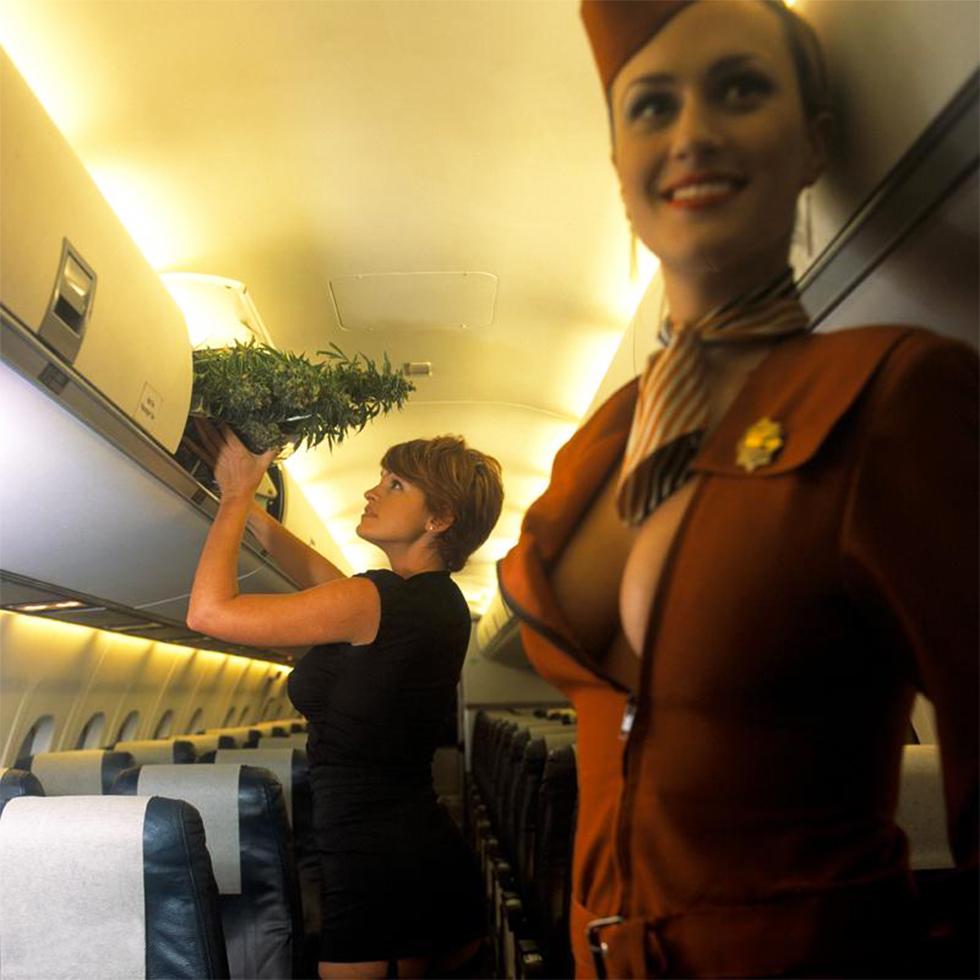 Gracias por volar con Colorado Air