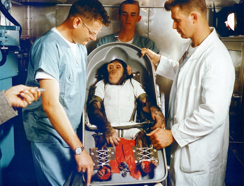 Ham, el mono astronauta