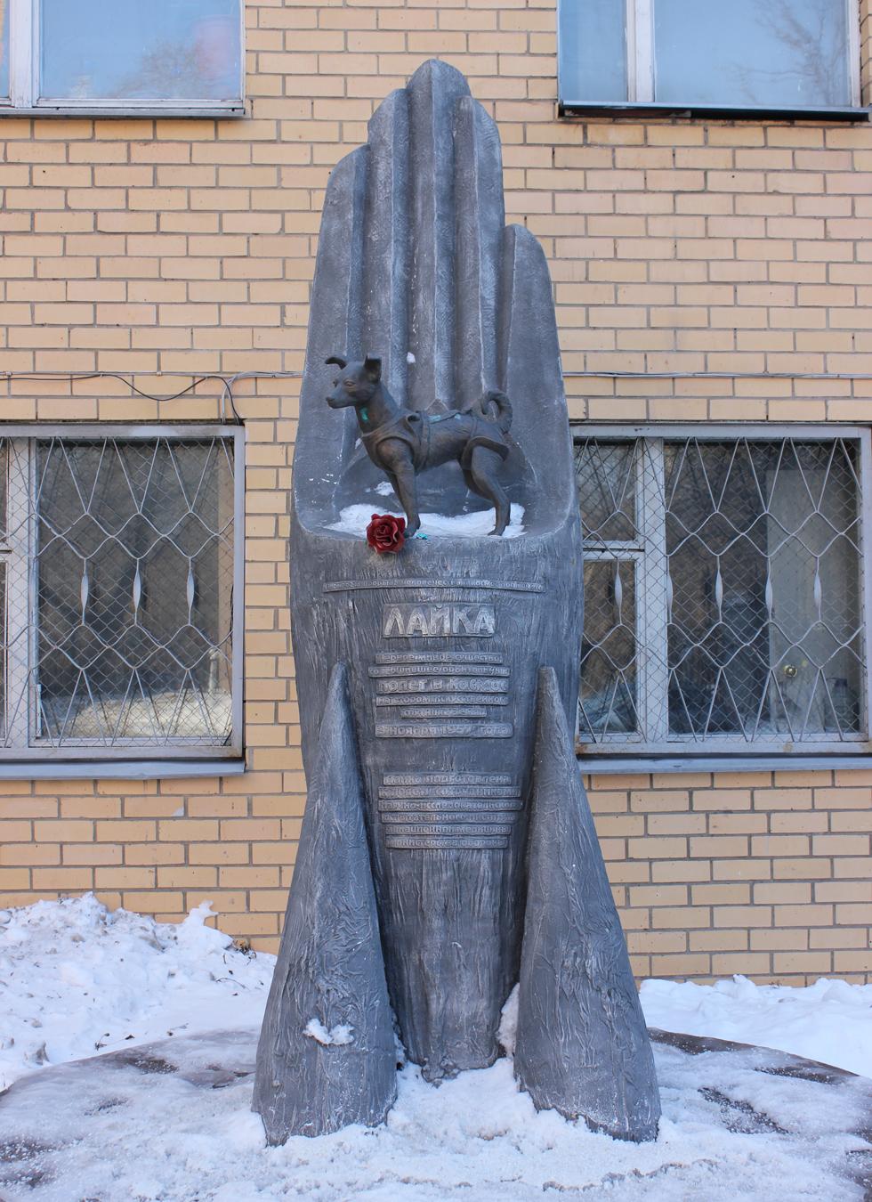 59 años desde el viaje de Laika