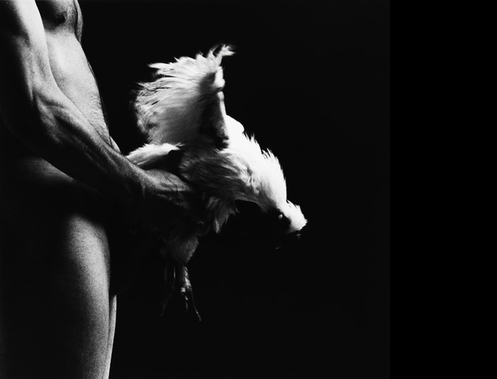Paul Blanca practicando sexo con una gallina