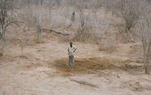 """El sorprendente """"entierro"""" de un elefante africano"""