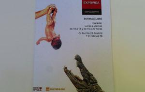 La locura de ExpoAborto