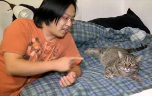 El gato más hijoputa del mundo