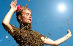 Mundo jodido: bailando con 12.000 abejas