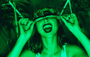 Porno y marijuana con Emerald Triangle Girls