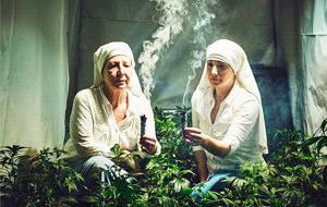 Las monjas que cultivan marihuana
