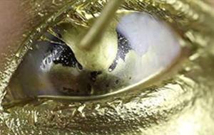 El fetiche japonés del oro líquido en los ojos