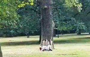 Voyeurismo cooperativo en un parque berlinés