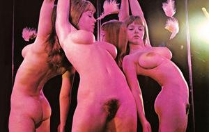 Psychedelic Sex: un lustro de erotismo y LSD
