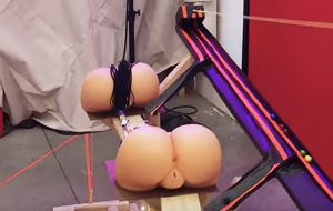 Principio de acción y reacción: máquinas sexuales, dildos y culos de goma