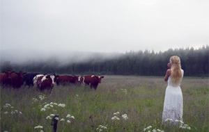 La sirena sueca que gobernaba a las vacas