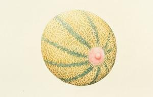 Los Fruitis sexy-bizarros de Aurel Schmidt